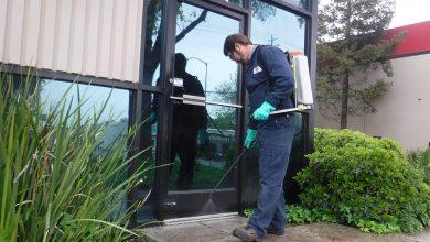 شركة مكافحة حشرات بالقصيم