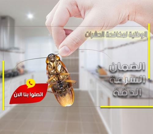 مكافحة الصراصير بالرس