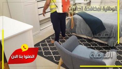 شركة مكافحة حشرات شرق الرياض